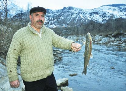 peixes turquia